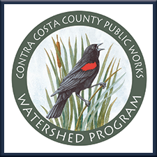 Contra Costa County Public Works Watershed Program