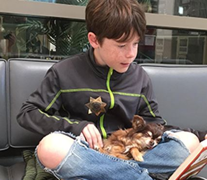 Boy reading to small dog in his lap