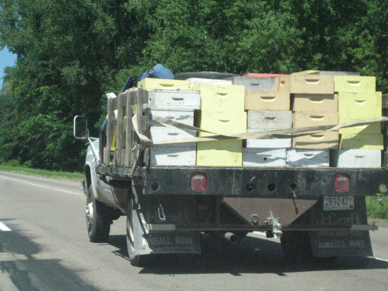Truck transporting beehives